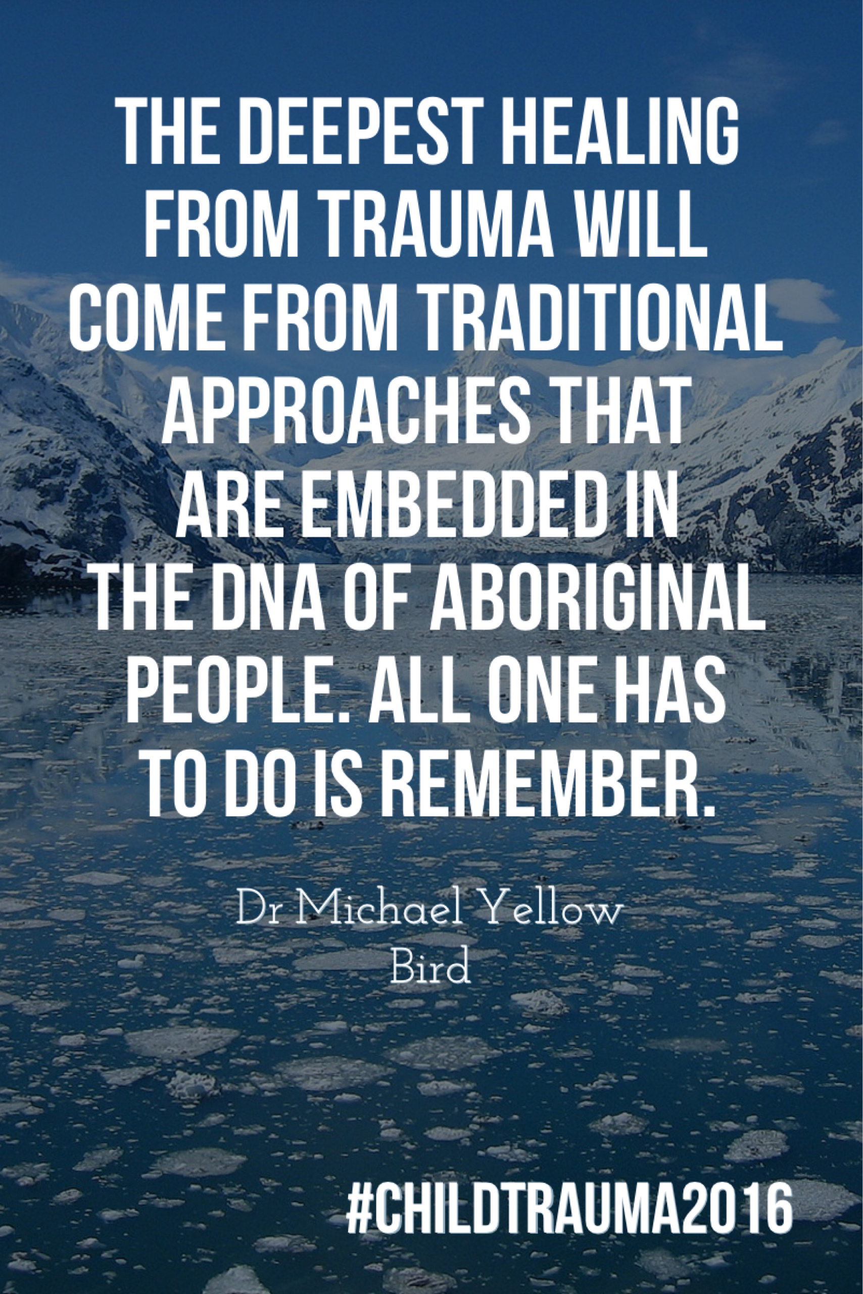 Dr Michael Yellow Bird